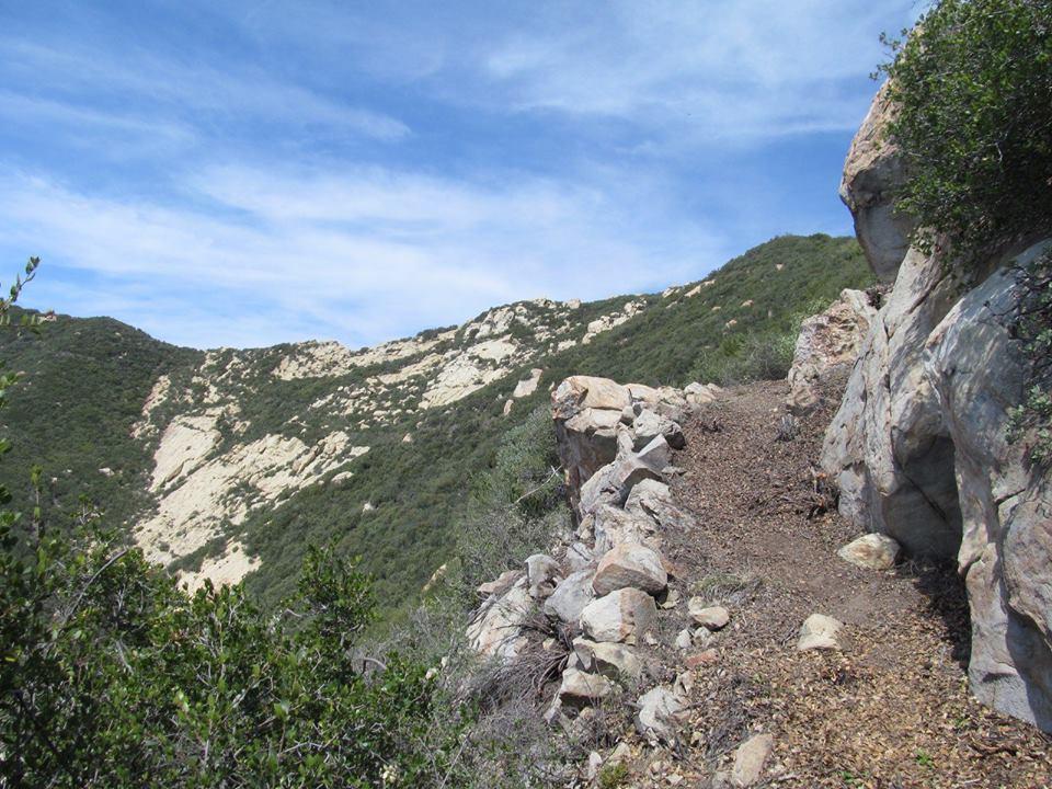 Camino 003_1923 Pairing